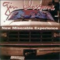 ginblossoms_new_200