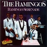 flamingos_serenade_150
